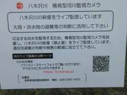20yagisawaIMG_0685.JPG